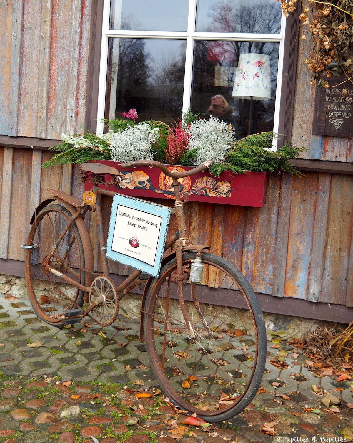 Vélo - Trakai