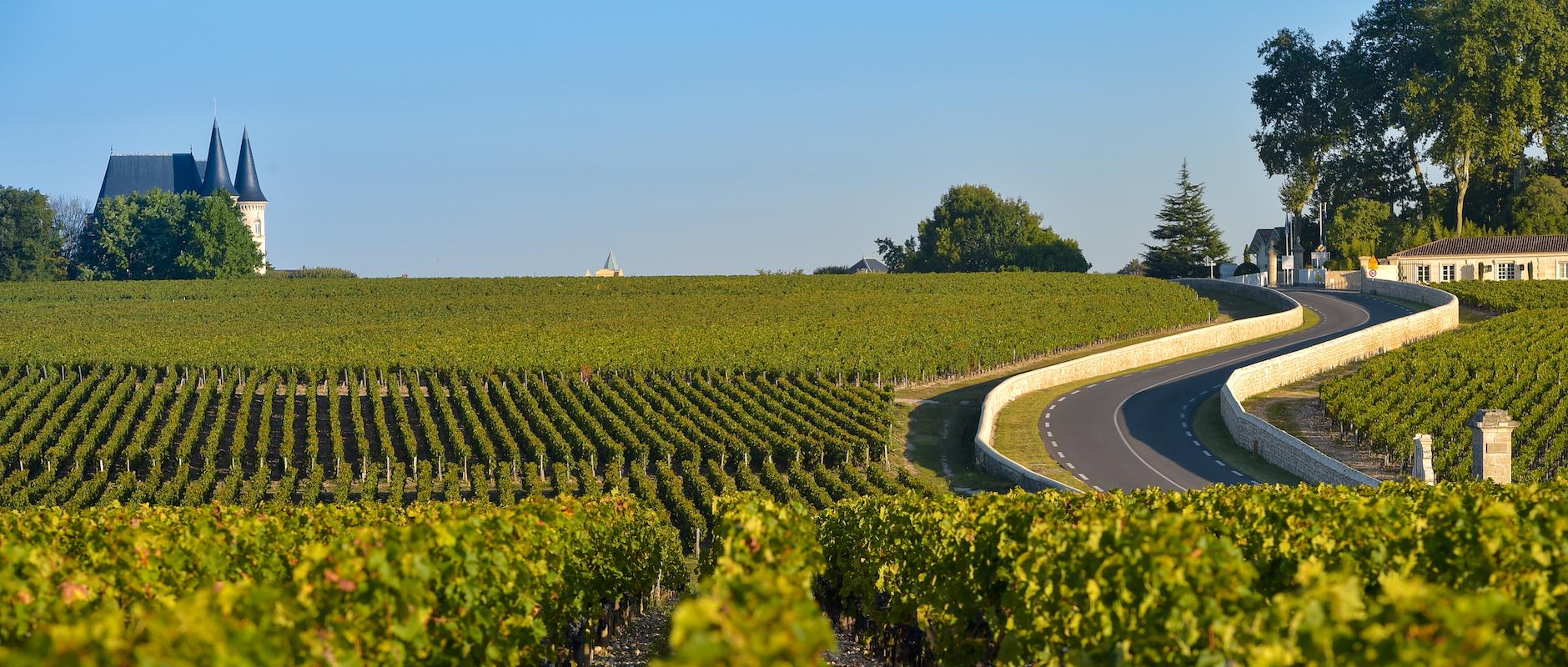 Vignoble Médoc Bordeaux ©FreeProd33 shutterstock