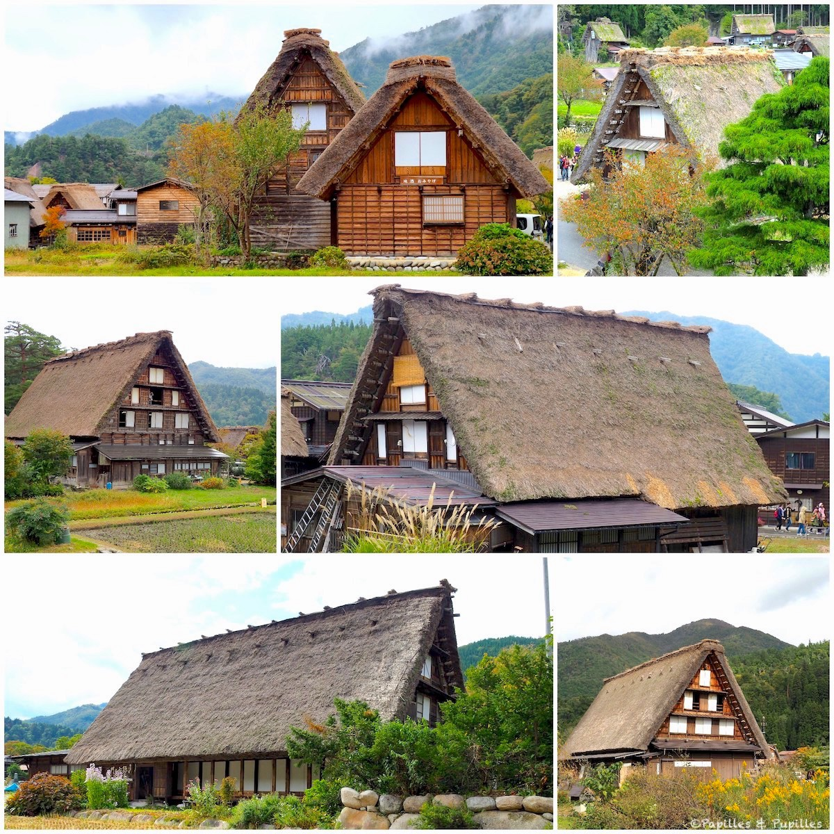 Village de Shirakawa-Go