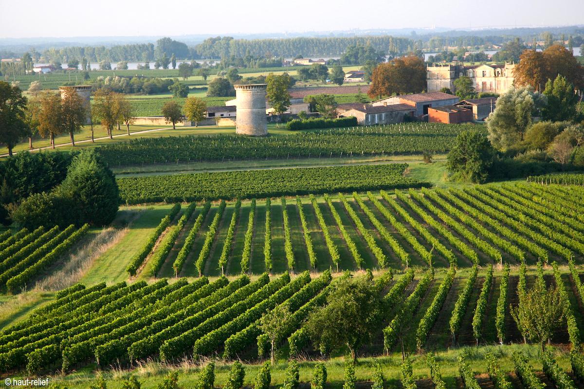 Paysage valloné Bourg sur Gironde ©OT Bourg