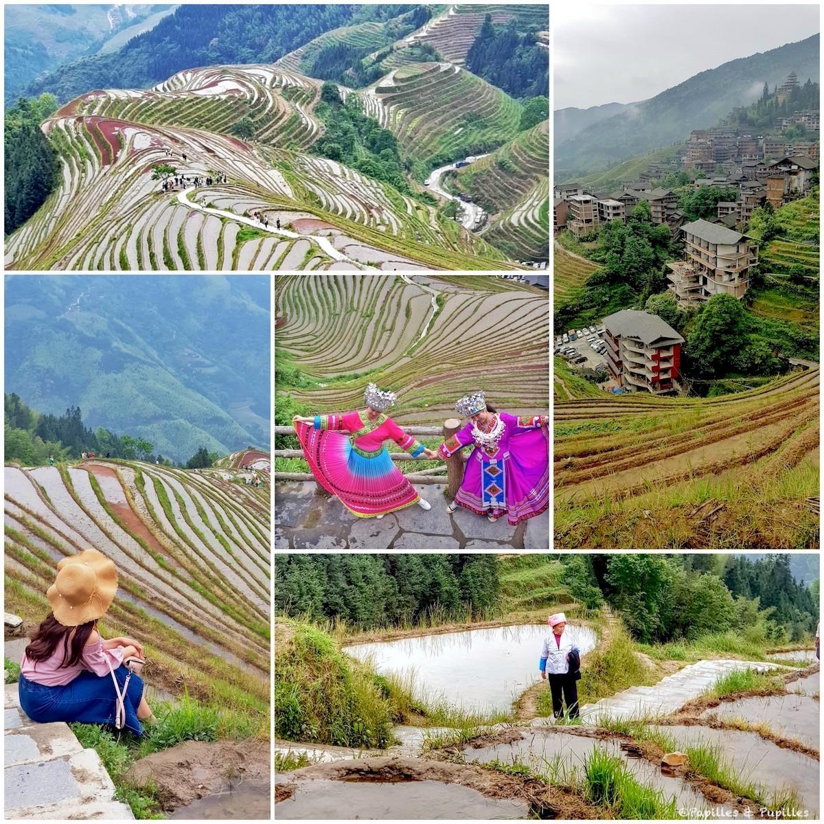 Les rizières en terrasses - Chine
