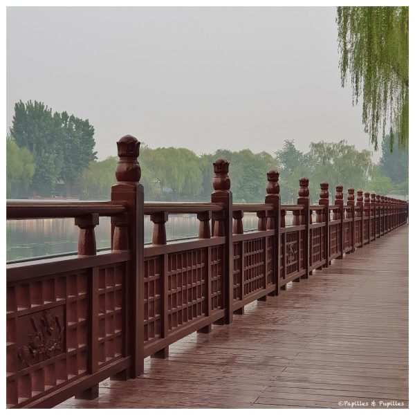 Promenade Lac Shichahai, Pékin