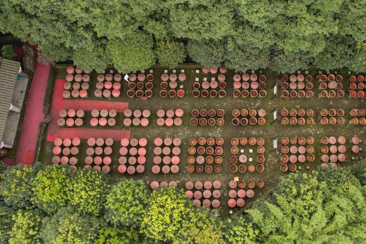 Fermentation Doubanjiang