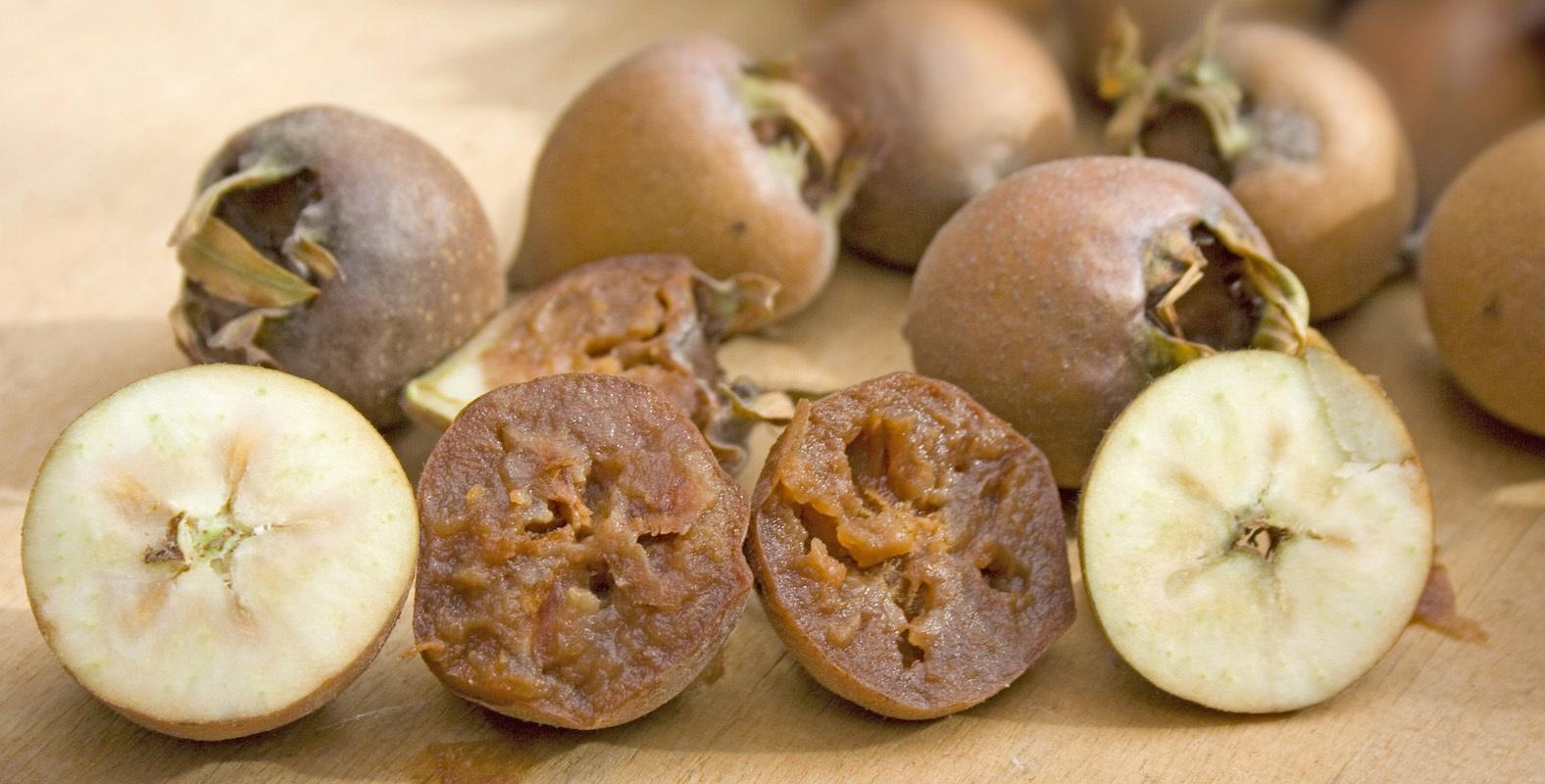 Nèfles - Coupe transversale - fruits verts et blets