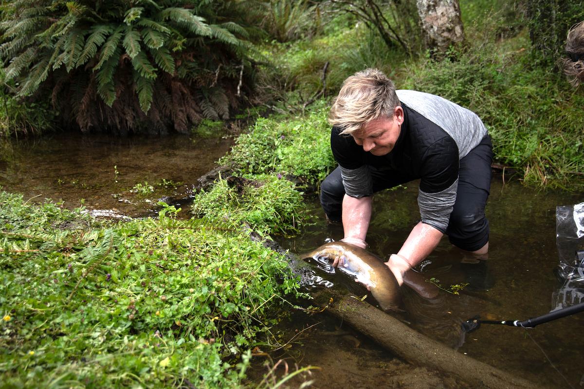 Gordon Ramsay en Nouvelle Zélande