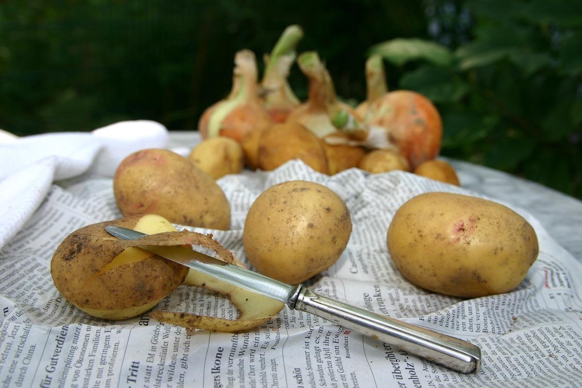 Epluchures de pommes de terre ©sonja_paetow