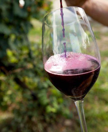 Lambrusco - Vin rouge pétillant italien ©Lambrusco DOP