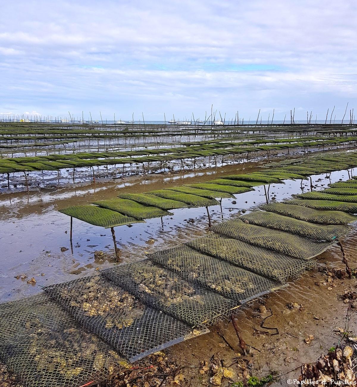 Tables à huîtres bassin Arcachon