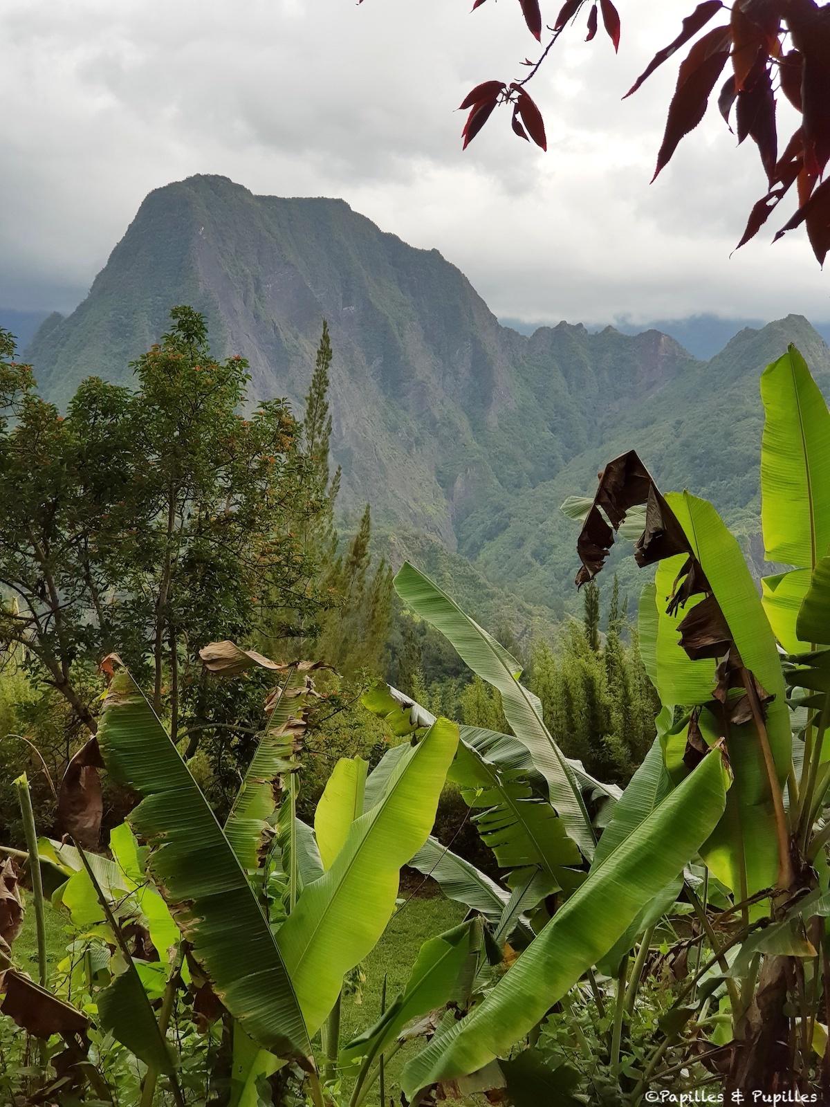 Le Piton d'Anchaing - Cirque de Salazie- Réunion