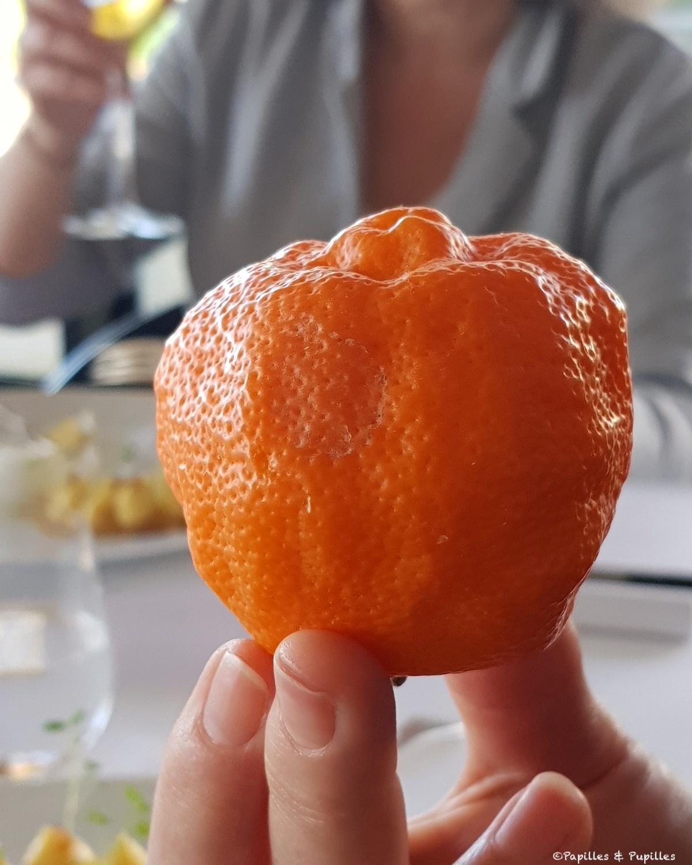 Lime rouge Osbek