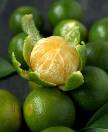 Calamansi © Dolly MJ shutterstock