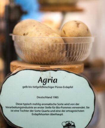 Pommes de terre Agria