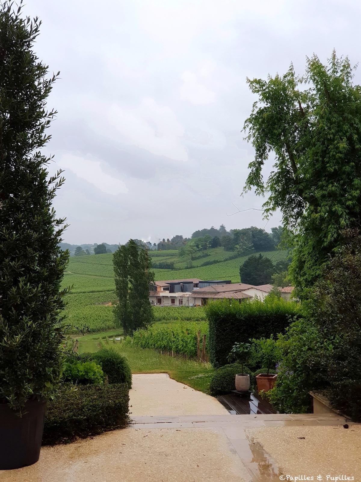 Les vignes de Fleur Cardinale