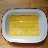 Feuille de lasagne
