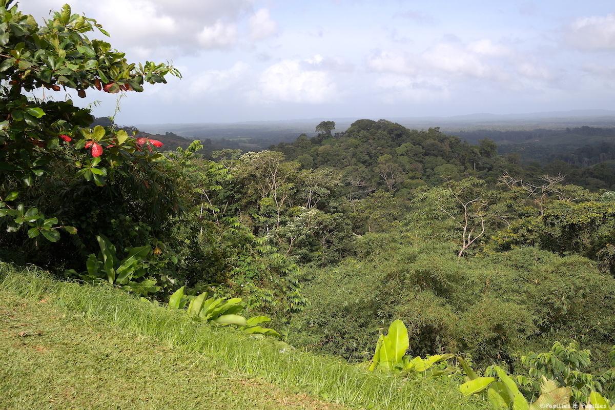Sur la route de Cayenne à Cacao
