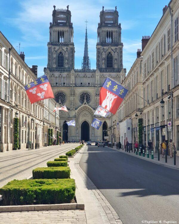 Cathédrale d'Orléans