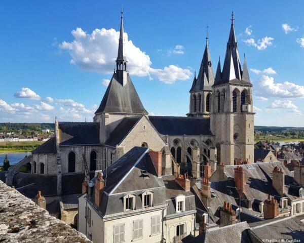 Vue sur la ville depuis le Château Royal de Blois
