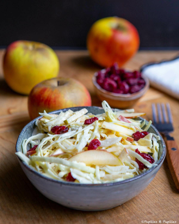 Salade de chou blanc râpé et pomme façon coleslaw