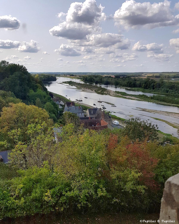 Vue sur la Loire depuis le Château de Chaumont