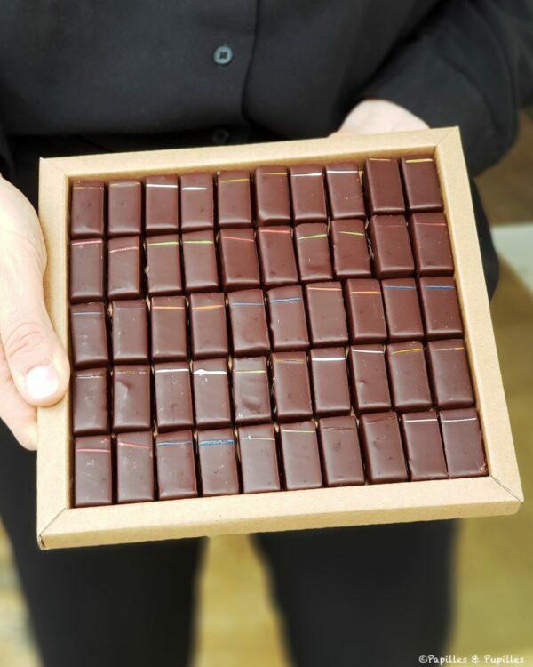Chocolats au miel - Bertrand chocolatier
