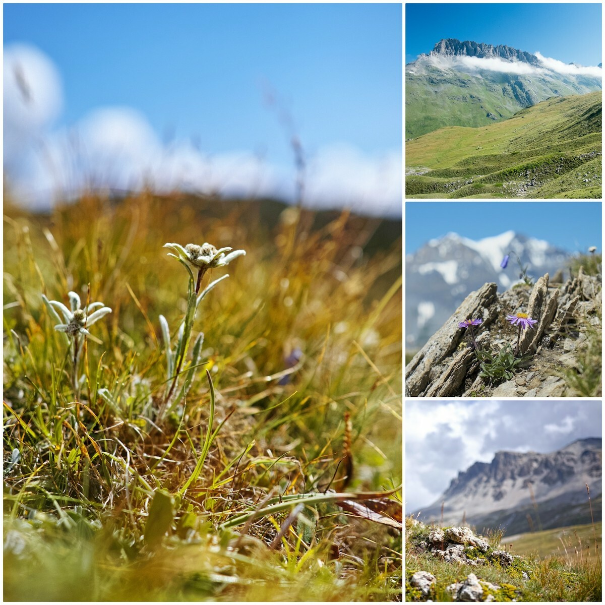 Parc National de la Vanoise © PIerre_BN CC BY 2.0