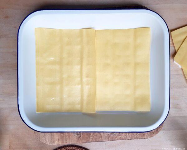 L2 - Feuilles de lasagne