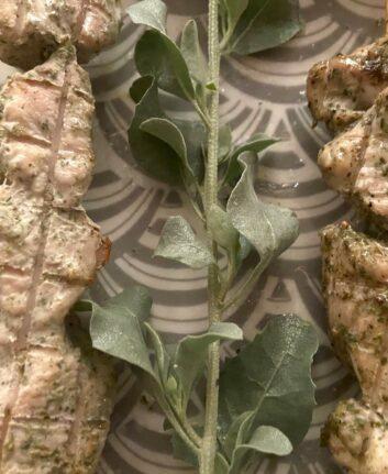 Brochette de poulet mariné aux herbes du bush ©Dale Tilbrook Experiences