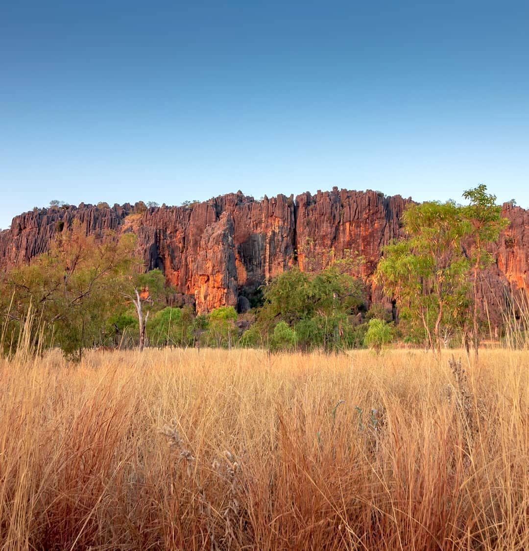 Bush ©Landscope_360 for Western Australia