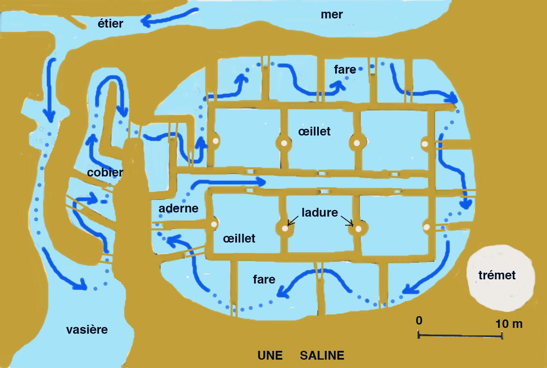 Fonctionnement d'une saline ©Alexandrin - Licence GFDL vikidia