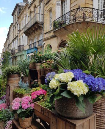 Rue Notre Dame, Bordeaux