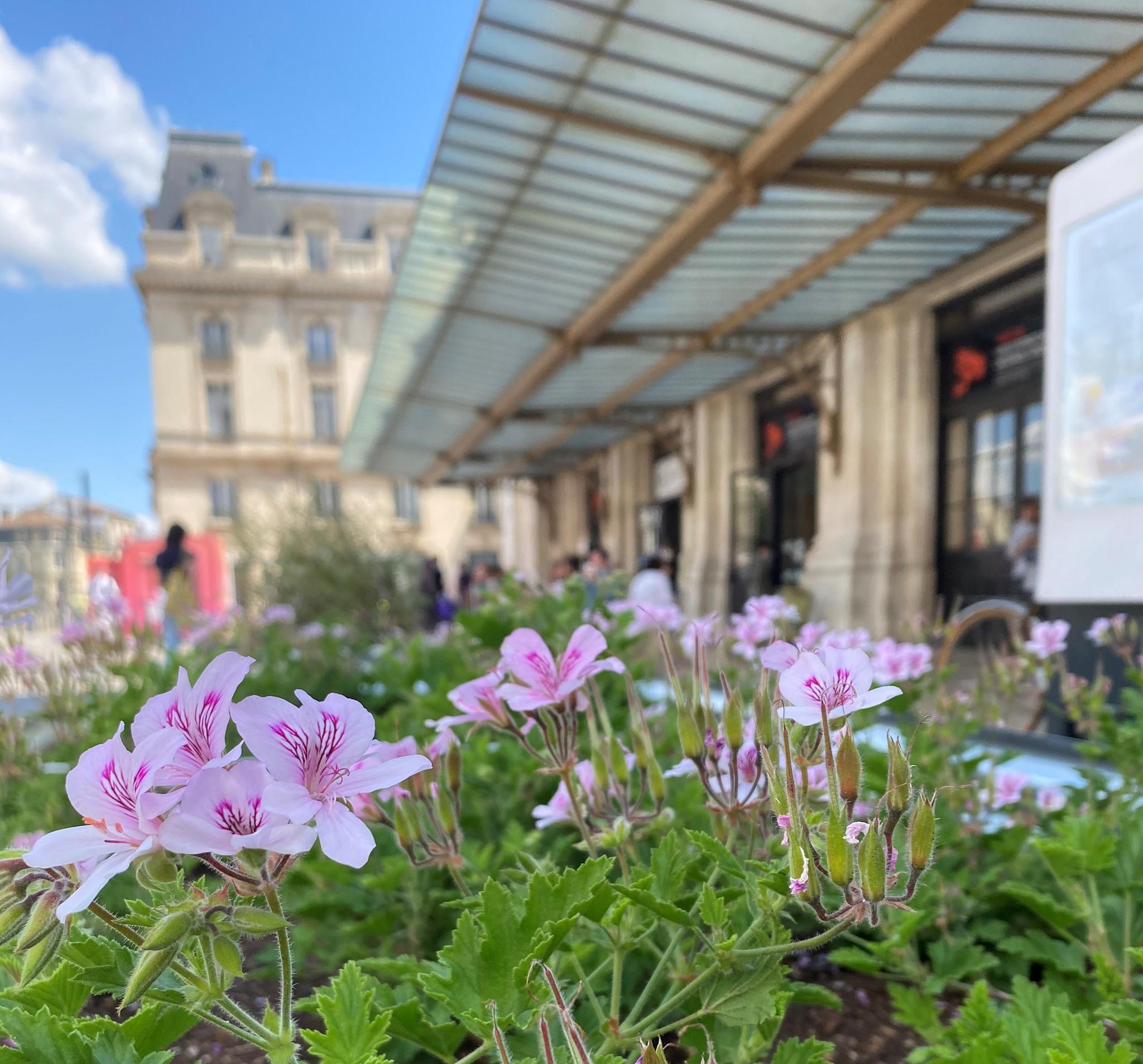 Bordeaux Saint Jean ©BordeauxStJean