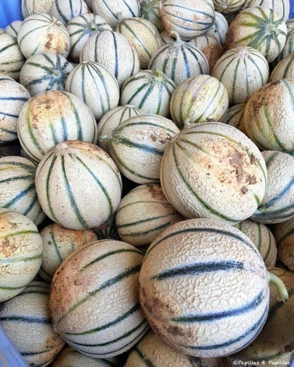 Melons avant lavage