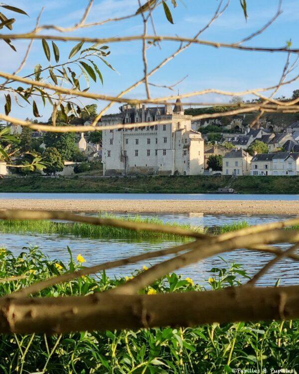 Vue sur le Château de Monstoreau