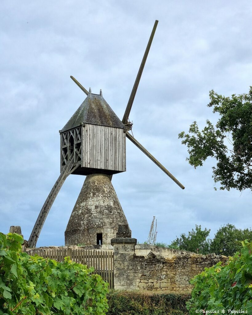 Moulin cavier Montsoreau