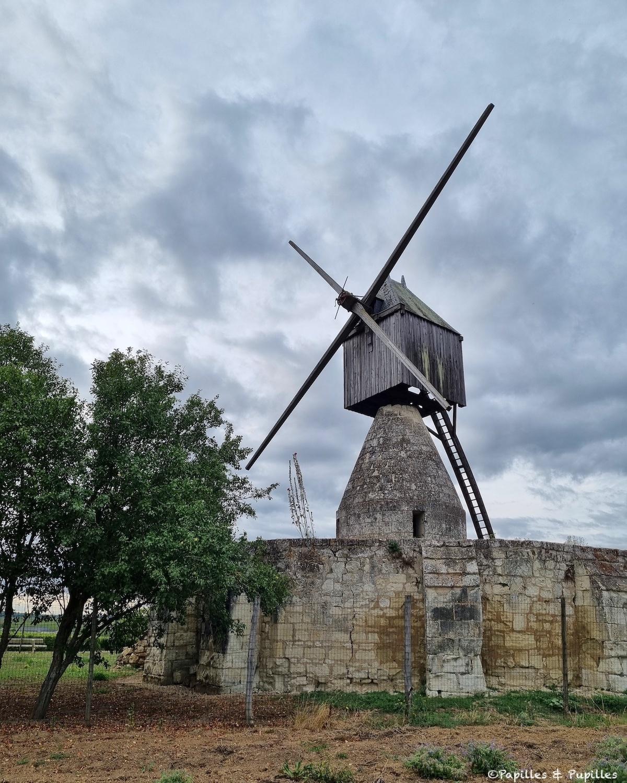 Moulin penché, Montsoreau