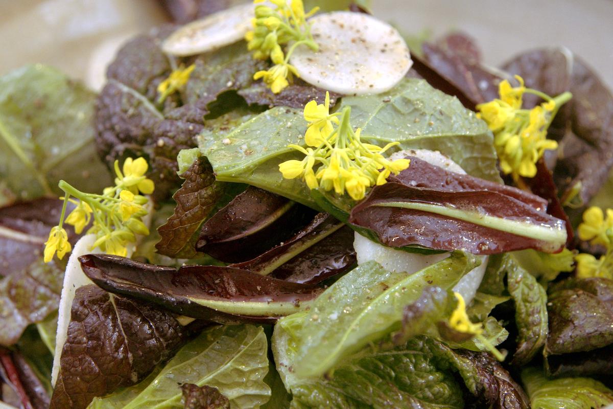 Salade de Rodney