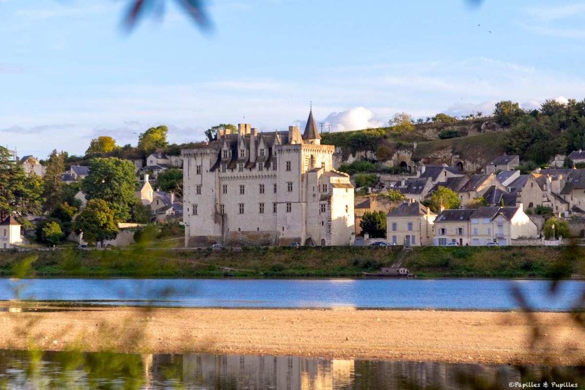 Vue sur le Château de Montsoreau