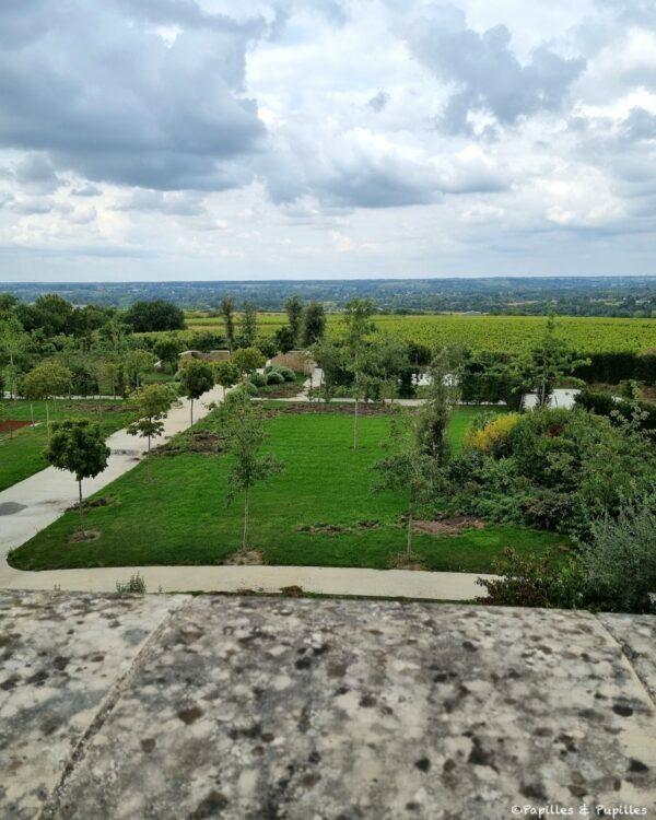 Vue sur les vignes depuis le Domaine FL