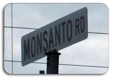 Monsanto Road