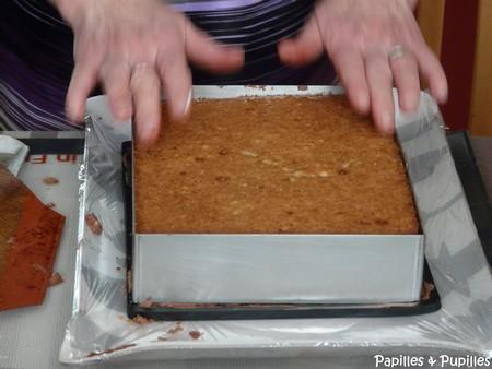 Recette trianon recette royal chocolat for Decongeler rapidement un congelateur