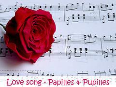 Images Papilles et Pupilles - Love song