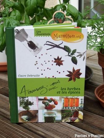 Amusez-vous avec les herbes et les épices - Claire Debruille