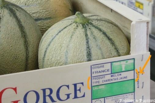Melons charentais jaunes