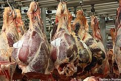 PAvillon des produits carnés Rungis