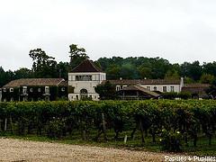 Château Smith Haut lafitte