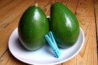 Avocat tropical