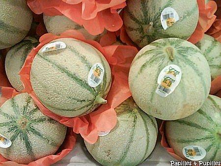 Comment choisir un bon melon - Quand cueillir un melon ...