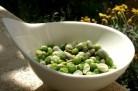 Salade printanière aux fèves et aux petits pois