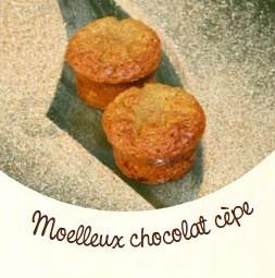 moelleux chocolat cèpe Régis Marcon Confibio