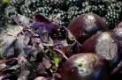 Betterave rouge à la fondue de mûres et au basilic pourpre – Alain Passard